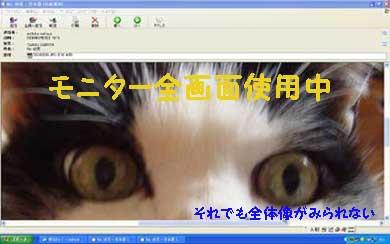 03292008.jpg